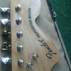 Fender telecaster deluxe copy ( bandung)