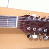 WTS Ibanez akustik elektrik 12 string