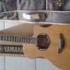 fs Gitar Yamaha APX 500ii