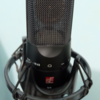 Microphone condenser SE Electronics X1 Vocal Pack + stand