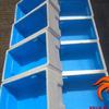 Styrofoam Box Sterofoam Breed Penjodohan Ternak Ikan Cupang