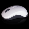 Logitech Mouse & Keyboard, AULA gaming Mouse, Rapoo, dll