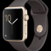 JUAL RUGI Apple watch series 2 42mm Gold Cocoa Sport Band