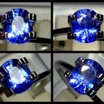 safir-sim-to-royal-dan-kristal-swarosvki