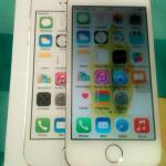 iphone-5s-gold-16gb-fullset-garansi-resmi-indobojonegoro
