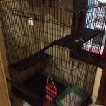 kandang-kucing-3-tingkat