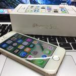 fs-iphone-5s-gold-64gb-fullset-ex-garansi-international