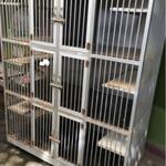 kandang-full-aluminium-besar-muat-5-kucing-anjing-ayam--roda