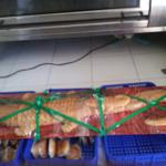 roti-buaya-panjang-15-m-jual-sepasang
