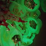 kalung-tali-merah-shio--buddha-glow-in-the-dark