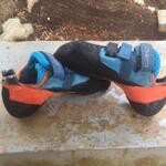 evolv-sepatu-panjat