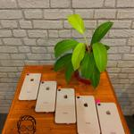 iphone-8-64gb-rose-mulus-like-new-no-rekondisi-ex-inter-fullset-tembus