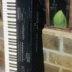 roland-jv-1000-vintage-synth-mulus