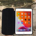 ipad-mini-4-16gb-wifi--muluuus