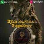 djin-harimau-sumatera