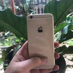 iphone-6-64gb-gold