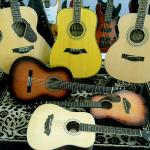 gitar-akustik-electric-collection--dame-samick-mitchell-yamaha-guitar-junior