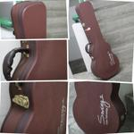swing-les-paul-hardcase---15jt