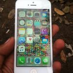 jual-atau-barter-iphone-5-16gb-white
