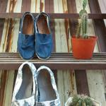 toms-shoes-navy-canvas-blue--white-grey