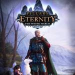 pillars-of-eternity-the-white-march-part-ii-7-dvd
