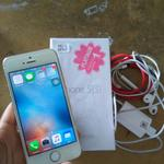 wts-iphone-5s-32gb-gold