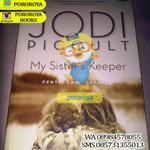 novel-jodie-picoult---my-sisters-keeper