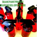 silane-paint-protect-spp-500-ml