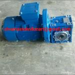 gear-motor-nmrv-030-ratio-1-75-1-50-1-4hp-output-as-14mm-3phase-380v-50hz-ip55