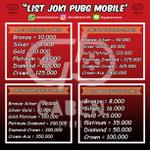 jasa-joki-professional-tier-pubg-mobile-ios-android