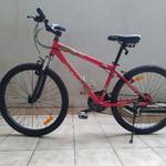 sepeda-united-monza-alloy