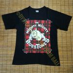t-shirt-band-the-mighty-mighty-bosstones---the-plaid-boys-of-boston