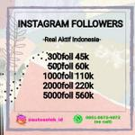 follower-instagram-real-indonesia