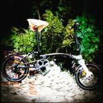sepeda-lipat-united-trifold-11s-gold-edition-not-3sixty-brompton-pikes-dahon-curl