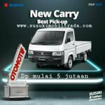 carry-pick-up