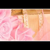 iva-rose-florist