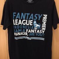 official-barclays-premier-league---fantasy-premier-league-2013-2014