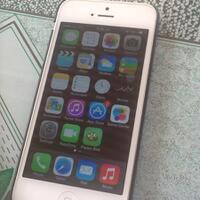 jual-iphone-5--flappy-bird-mulus
