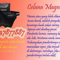 celana-hernia-magnetik-087747877887