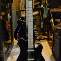 custom-gitar-bass---fender-gibson-lakewood-ibanez-prs-musicman-ephiphone
