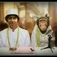 persib-juara-the-jakmania-ini-akan-kimpoi-dengan-monyet