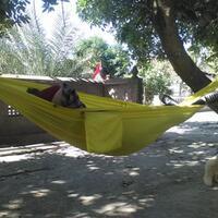wts-hammock