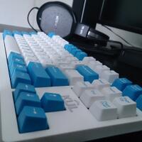 hendyzone-mechanical-keyboard-zone-duckyleopoldfilcovortexkeycooltopredll