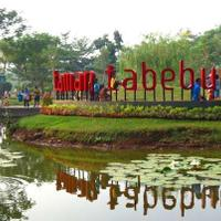 taman-tabebuya-oasis-di-selatan-jakarta