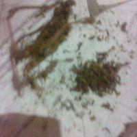 smokers-kaskus
