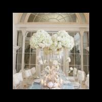 inspirasi-dekorasi-pernikahan--winter-in-wonderland