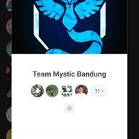open-grup-team-mystic-regional-bandung