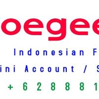 mini-account-soegeefxnet-initial-deposit-100--lokal-broker
