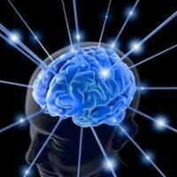 10-hal-aneh-yang-terjadi-di-otak-gan