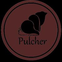 lowongan-pekerjaan-di-pulcher-bags-sebagai-tim--bukan-karyawan-biasa